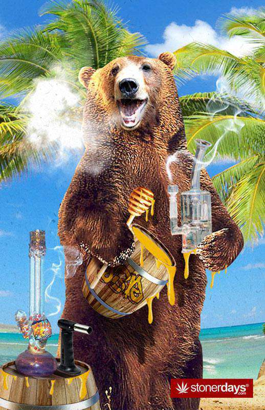 MASTER KUSH BEAR GOES TO HAWAII HEMP CARDS