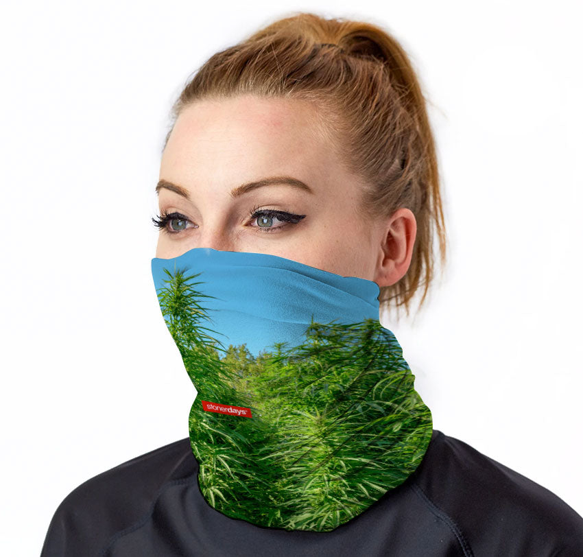 Money Grows on Trees Neck Gaiter