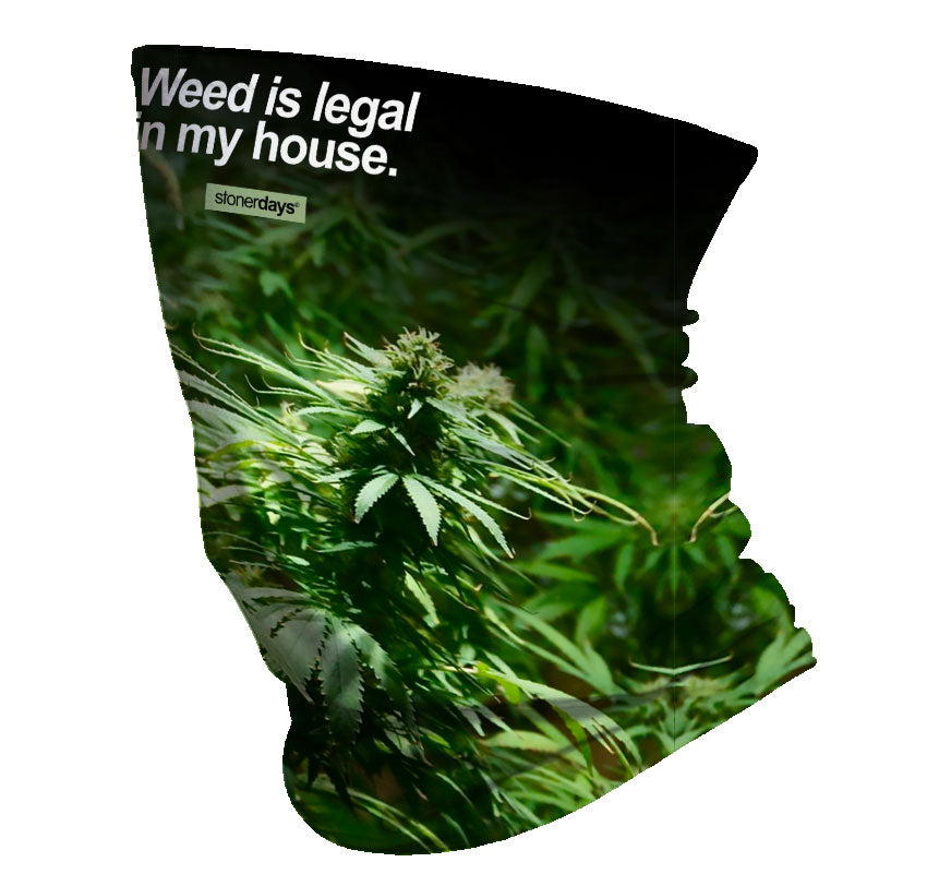 Weed is Legal In My House Neck Gaiter