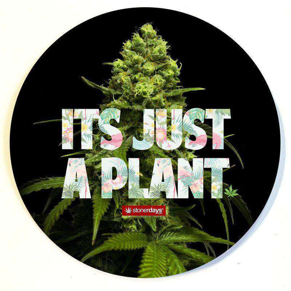 ITS JUST A PLANT DAB MAT-StonerDays