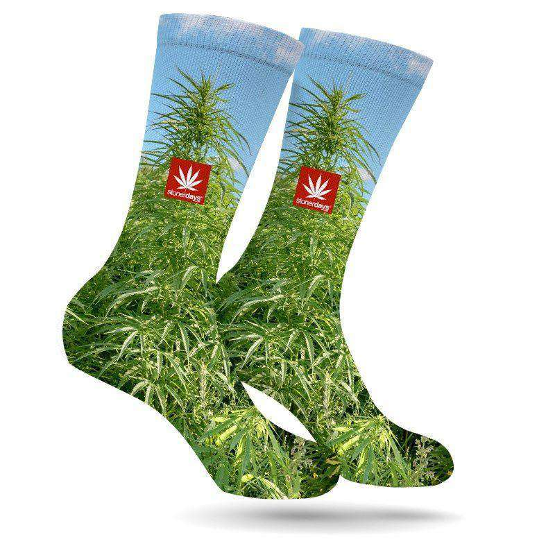 MONEY GROWS ON TREES CREW SOCKS-StonerDays