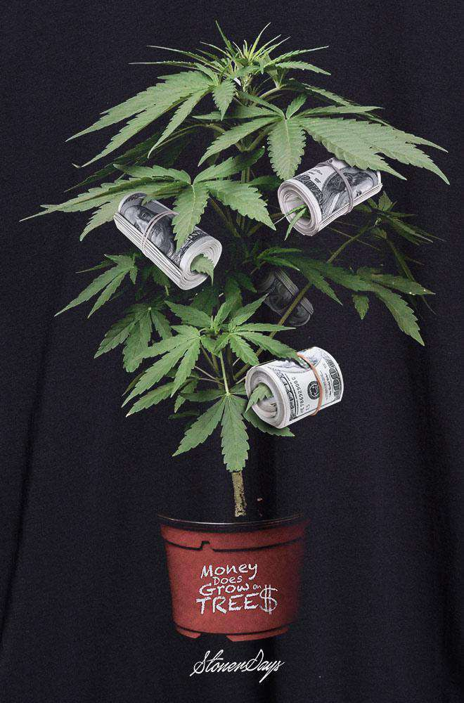 Money Tree Hoodie