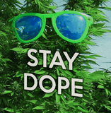 STAY DOPE HEMP GREETING CARD-StonerDays