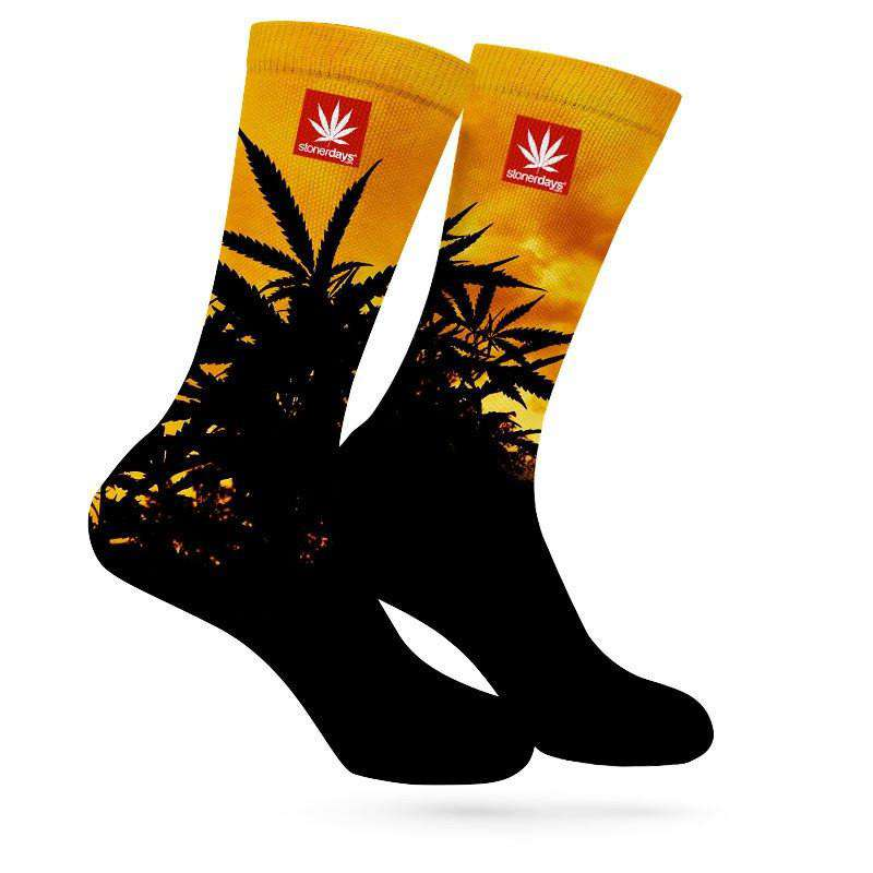 SUNSET WEED SOCKS
