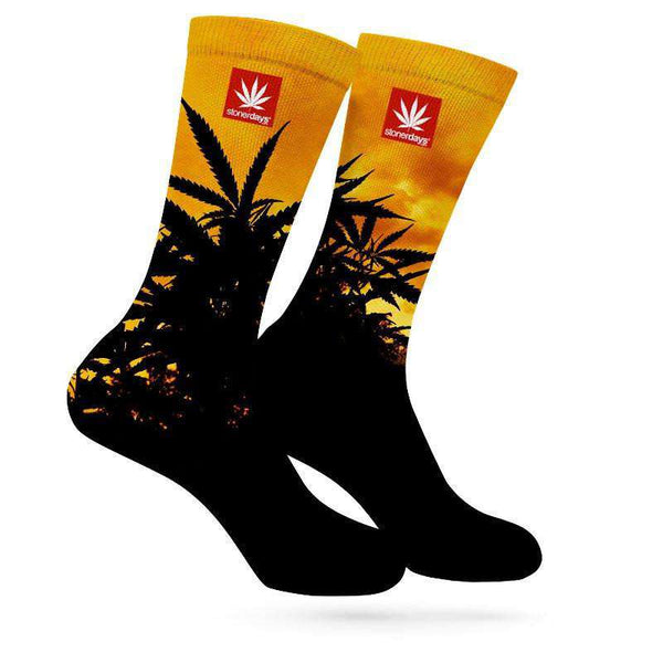 STONERDAYS SUNSET WEED SOCKS-StonerDays