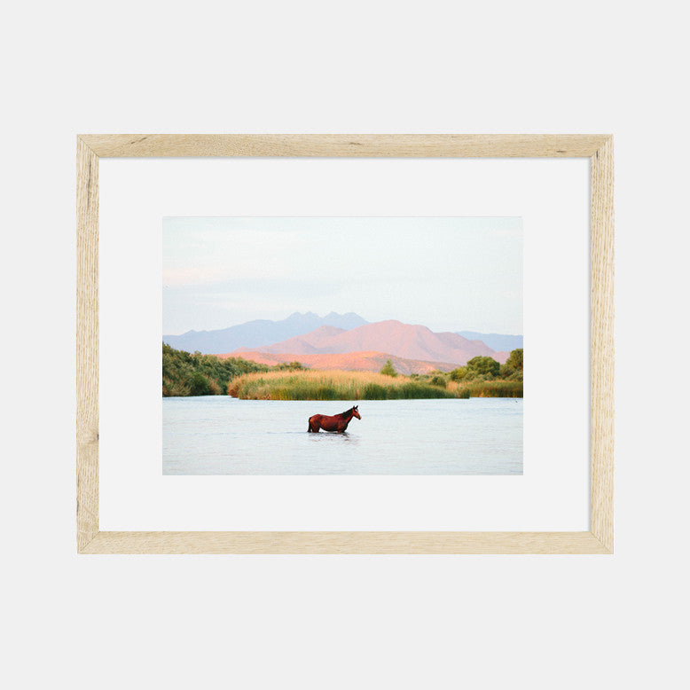 Photographic Print | A Horse With No Name II
