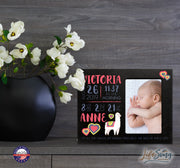 Personalized Nursery Baby Birth Stats Picture Frame - Alpaca