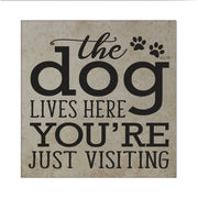 "LifeSong Milestones Everyday Home Decor Pet Trivet Gift Ideas for Pet & Pet Lovers Dog Lovers Gifts for Women, Dog Owner Coaster Gift for Home Decor 5.75"" x 5.75"" x 0.25"""
