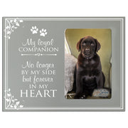 Words of Condolences Message Quotes for Loss of a Pet death funeral wall hanging My Loyal