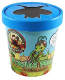 Praying Mantis - Hatching Habitat Cup
