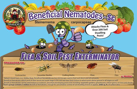 Beneficial Nematodes SC - Label