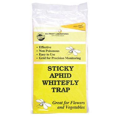 Yellow Sticky Aphid & Whitefly Traps