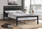 Tara Bed Frame - Black - Single/Double/Queen - The Fine Furniture