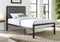 Cedric Bed Frame - Black - Single/Double/Queen - The Fine Furniture