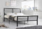 Marlowe Bed Frame - Black Metal - Single/Double/Queen - The Fine Furniture