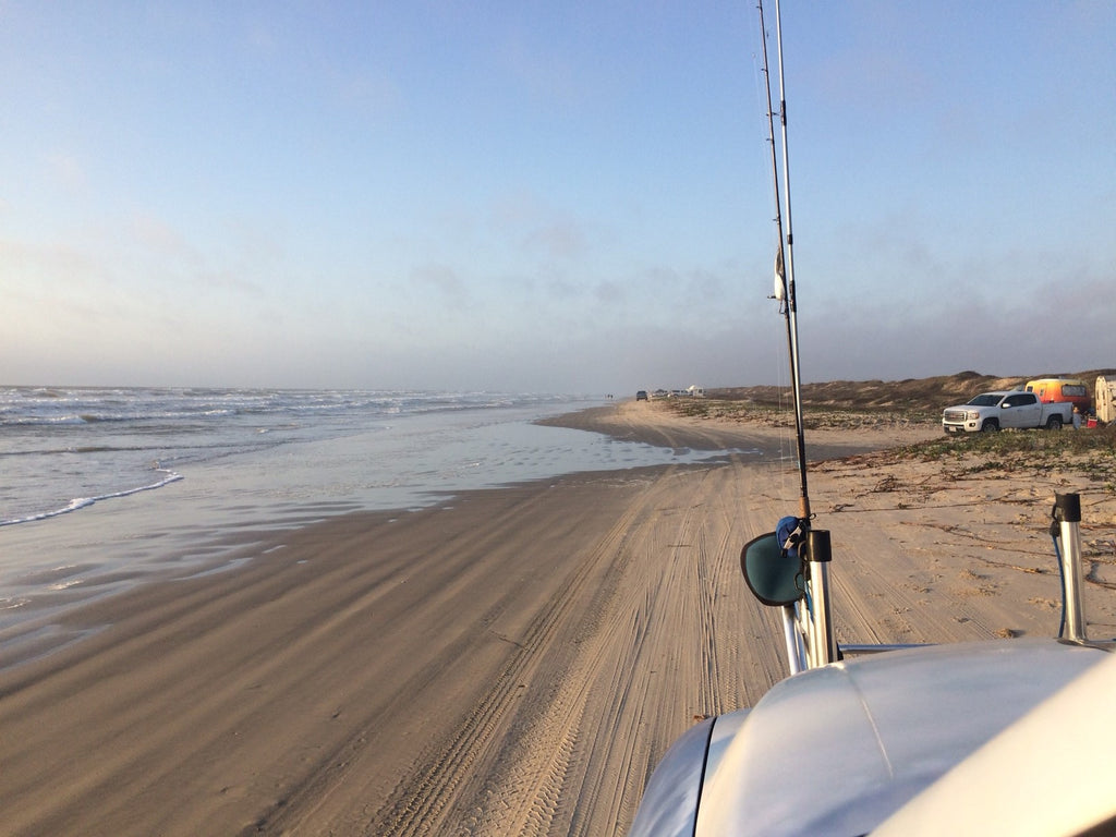 Friends of Padre Beach Report 3/13/2016