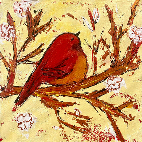 Chubby Red Bird in Spring