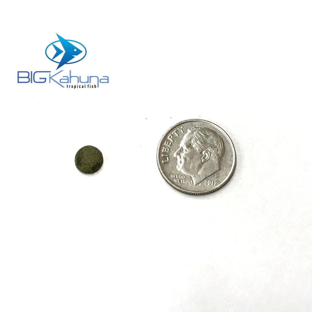 Big Kahuna Bulk Spirulina Algae Wafer Disc Tiny 8MM