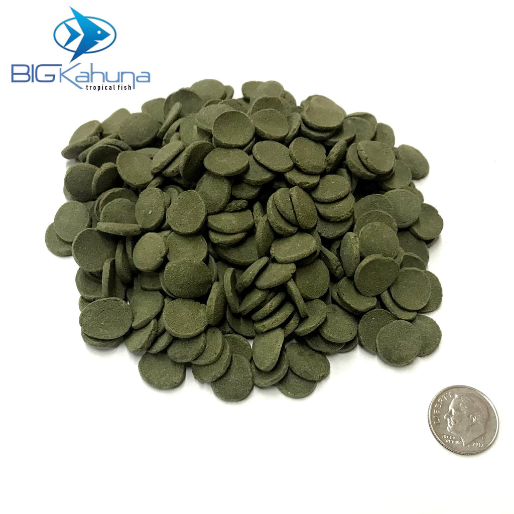 Big Kahuna Bulk Spirulina Algae Wafer Disk Small 12MM