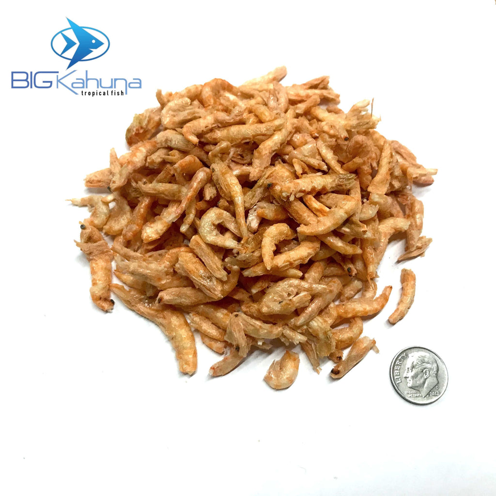 Big Kahuna Bulk Krill Freeze Dried Krill Superba From Antarctica