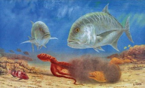 "Lithograph: ""Reef Predators"" by Les Hata"
