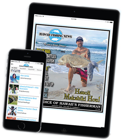 February Subscription Deal: HFN's E-MAGAZINE -  ONLY $19!