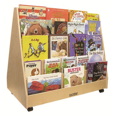 Birch Double-Sided Book Display (MS)