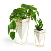 Trigg Vase White (Set of 2)