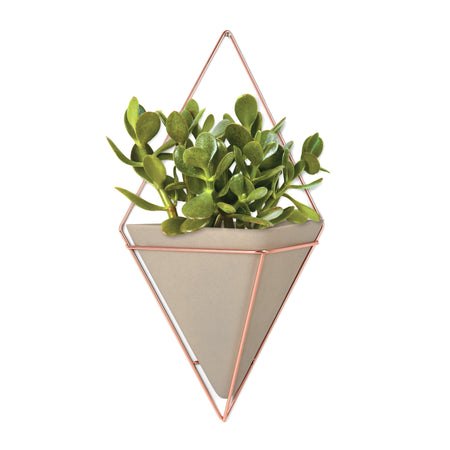 Trigg Small Wall Vessels (Set of 2)
