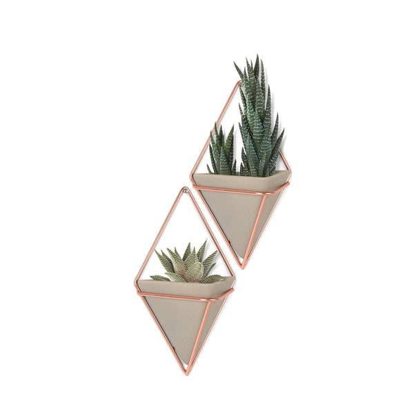 Trigg Small Wall Vessels - Concrete/Copper (Set of 2)