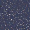 Constellations Wallpaper - Navy