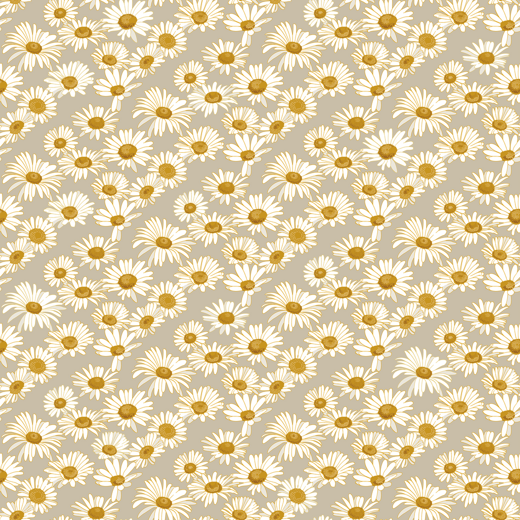 Daisies Wallpaper