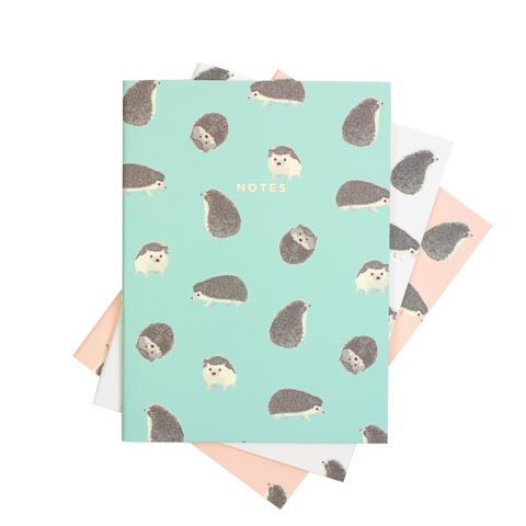 LARGE HEDGEHOG NOTEBOOK 3/SET - Hadron Epoch