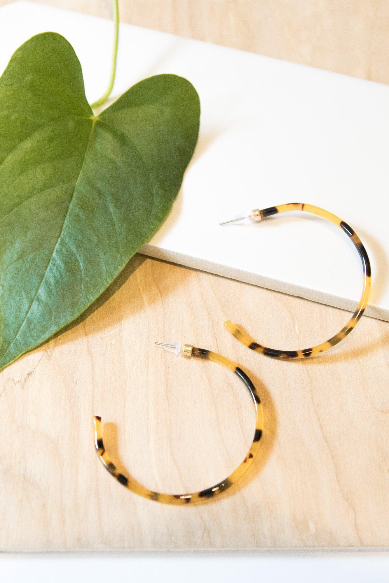Going Through Hoops in Tortoise