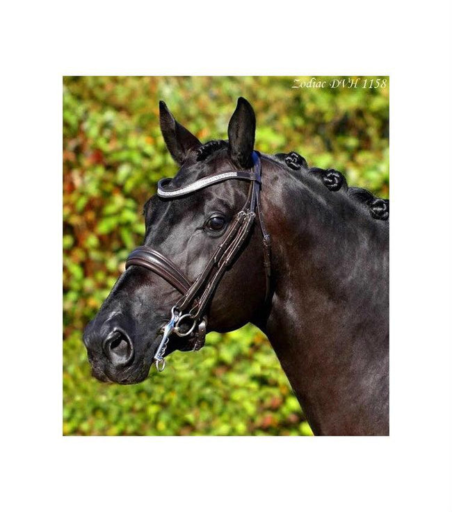 SD Design Furstina Double Bridle Brown