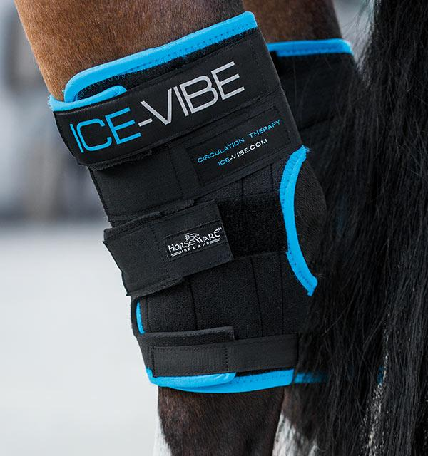 Ice-Vibe Cold Hock Wraps PREORDER
