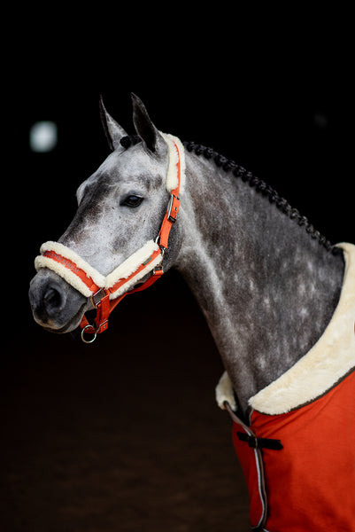 Equestrian Stockholm Fleece Headcollar & Lead Brick Orange