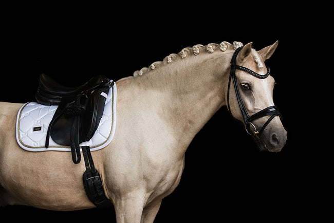 Equestrian Stockholm Bandages White Perfection Gold