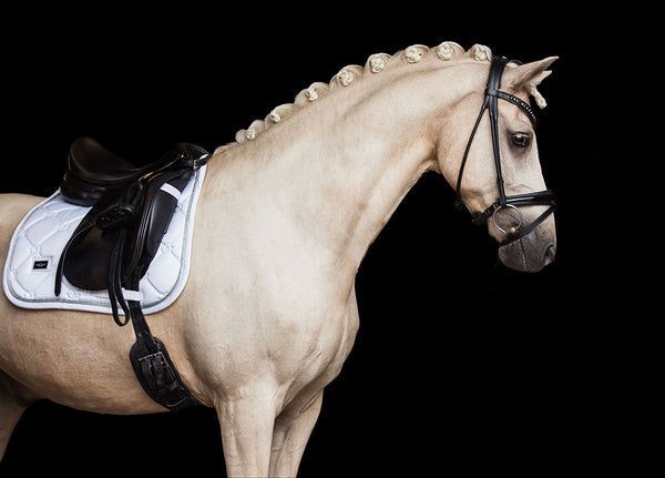 Equestrian Stockholm Bandages White Perfection Silver