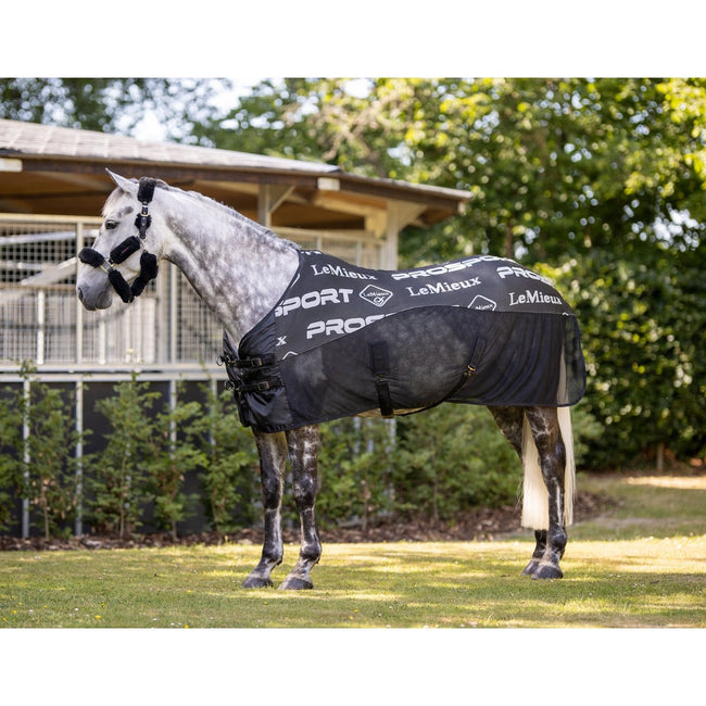 LeMieux Carbon Cooler Rug Black