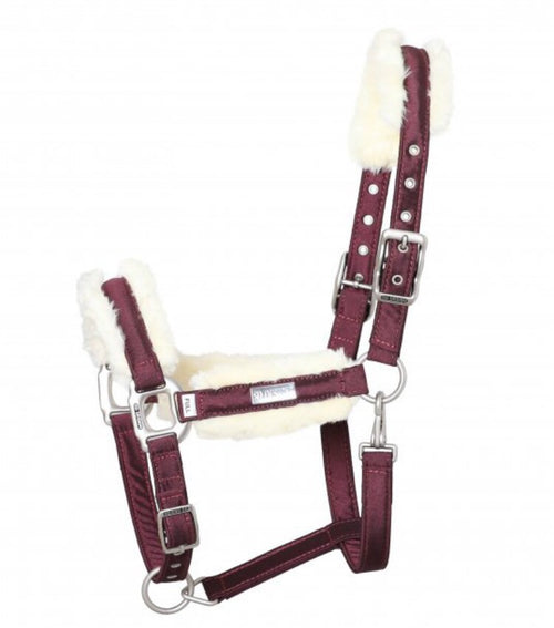 SD Design Gem Headcollar Ruby