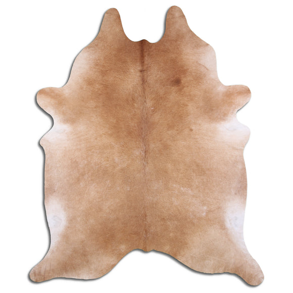 TF33 Hand Tufted Hand Carved 100% Polyester Area Rug