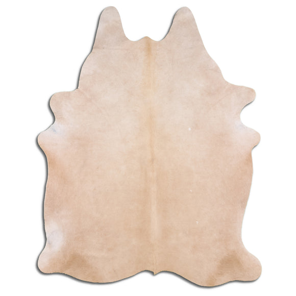 TF36 Hand Tufted Hand Carved 100% Polyester Area Rug