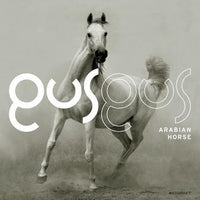 GusGus - Arabian Horse (CD)