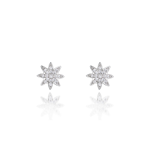 'Vixi' Sterling Silver CZ Nova Star Stud Earrings