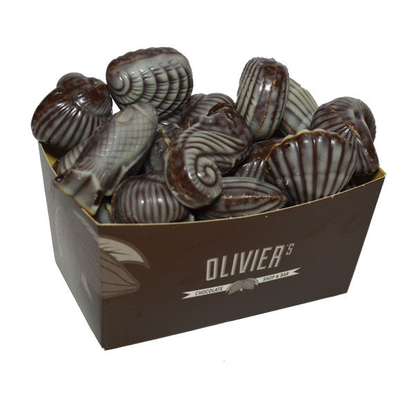Box of Sea Shells - Dark