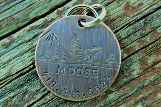 MOOSE | Hand Stamped Pet ID Tag | The Landlocked Dog