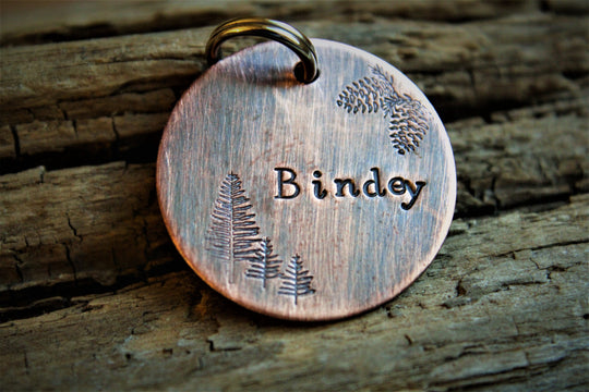 Bindey Custom Dog Tag | Hand Stamped Pet ID Tag | The Landlocked Dog