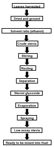 Flow-chart demonstrating the process of producing stevia, before being added to Huel