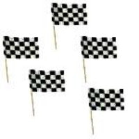 Mini Checkered Flag Picks